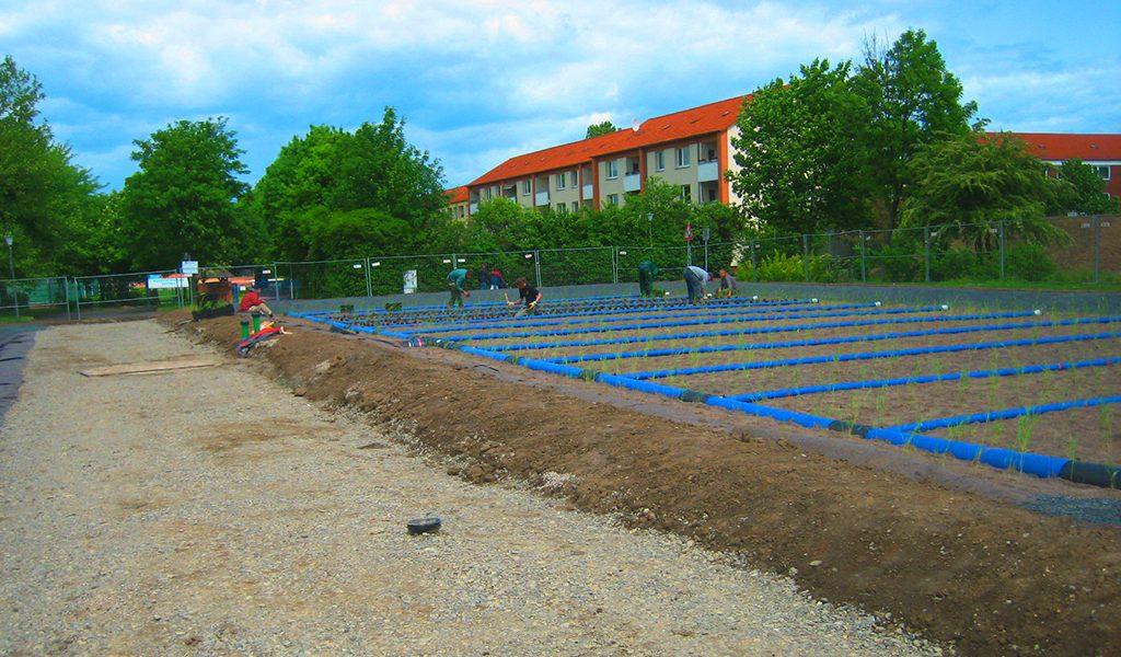 Umwelttechnik - Naturfilteranlage-Freibad